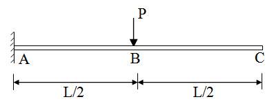 Module 2 Lesson 8 Fig.8.5