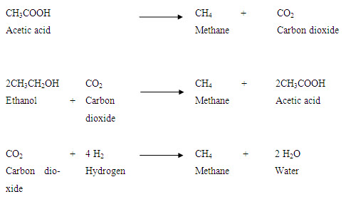 RE&S: LESSON 13  Microbiology of biogas production