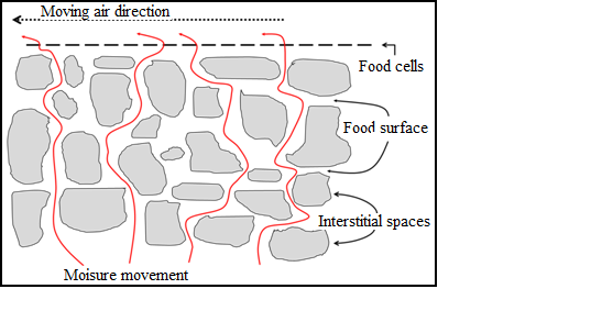 Food Technology-I: Lesson 11  DRYING: PRINCIPLE, METHODS AND