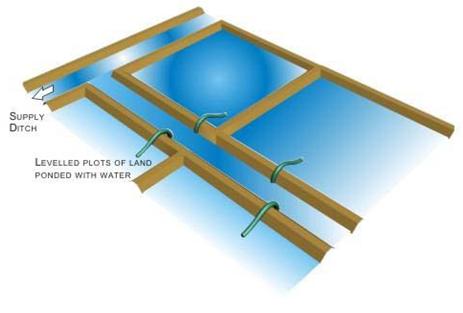 inundation irrigation system