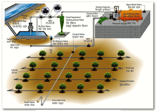 Ie Lesson 42 Components Of Drip Irrigation System I
