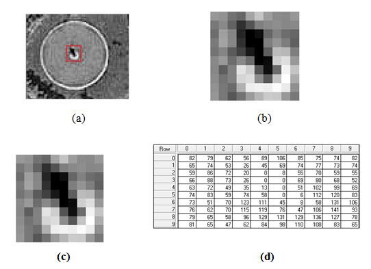 Fig. 2.8. Basic character of digital image data