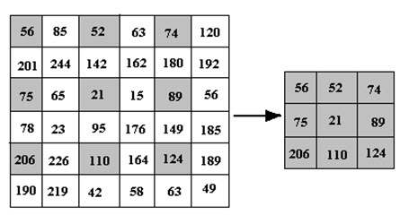 Fig. 11.1. Image reduction (2x)