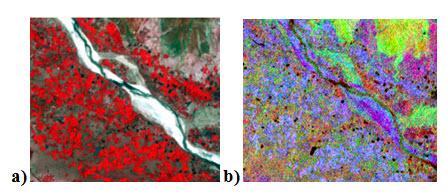 Fig. 11.15. a) Input image (RGB:432) b) output image (RGB: 432)