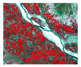 Fig. 11.5. False colour composite multispectral Landsat TM image