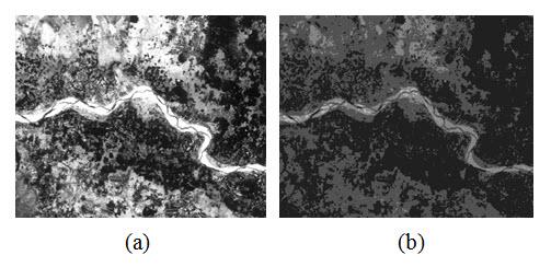 Fig. 11.7. a) Input image b) Output image (having 4 slices)
