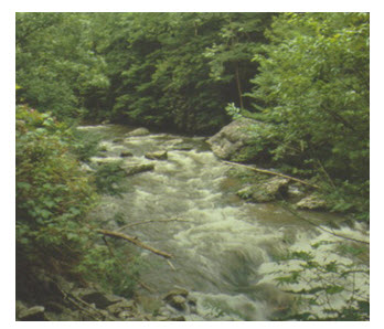 13.1. Incised or Rocky Rivers