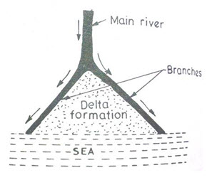 13.5. Deltaic rivers