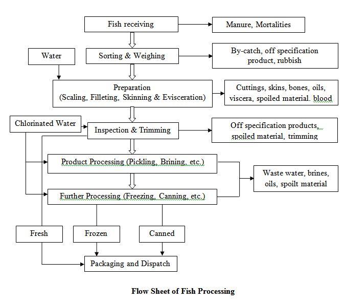 Flow Sheet of Fish Processing