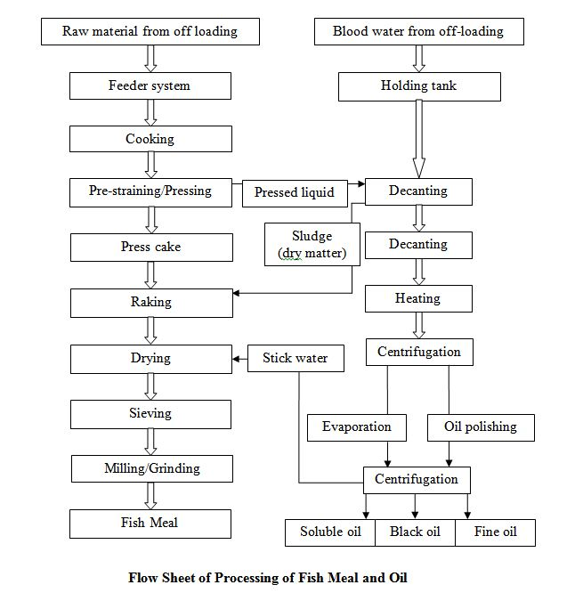 Flow Sheet of Processing of Fish Meal and Oil